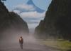 """Cruzada solidaria """"Fireflies Patagonia"""" recorrerá 1.000 kilómetros en siete días"""